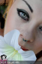 2006-11-26_-_Stellae_-_White_Flowers.zip