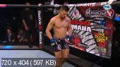Смешанные единоборства. MMA. UFC Fight Night 67: Condit vs. Alves (Full Event) [30.05] (2015) WEB-DL, HDTVRip