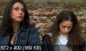 Трахни меня / Baise-moi (2000) DVDRip | AVO | VO