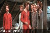 ���� ������ ��� ���� ������� / Seven Brides for Seven Brothers (1954) DVDRip