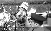 Прекрасная американка / La Belle Americaine (1961) DVDRip