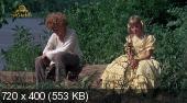 Том Сойер / Tom Sawyer (1973) HDTVRip   DVO
