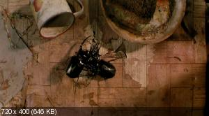 Букашки! / Bugs! (2003) BDRip   AVO