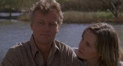 Луковое поле (1979) BDRip 1080p