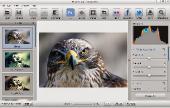 Photo Effect Studio Pro v4.1.3.0 Portable