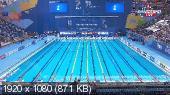 Чемпионат мира. Плавание. День 2. Финалы [03.08] (2015) HDTV 1080i