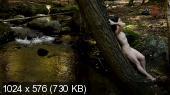 ��������� ������� ������� / Broken Side of Time (2013) DVB-AVC | DVO