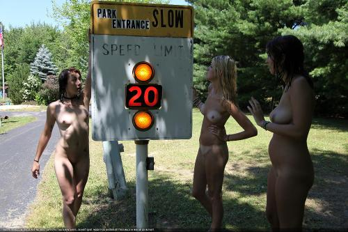 School Zone In the Park